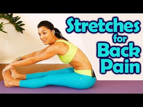 easy back pain stretches for beginners how to improve